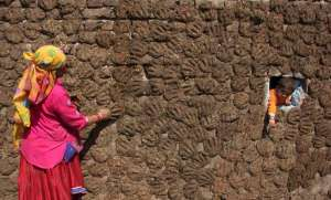 A woman pastes cow dung cakes on a wall as her grandson Sanju peeps from a hole in Molaya village