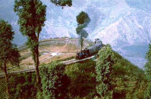 darjeeling-Toy-train_1243236939272_L
